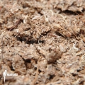 Dried Sphagnum fine '0,5 k'